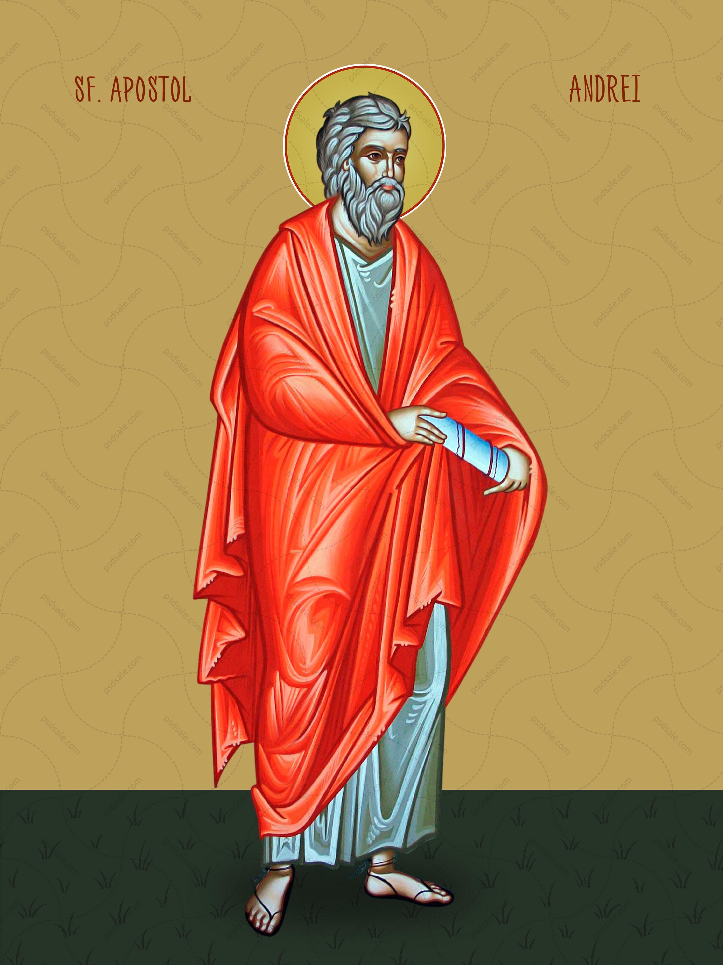 Андрей, апостол