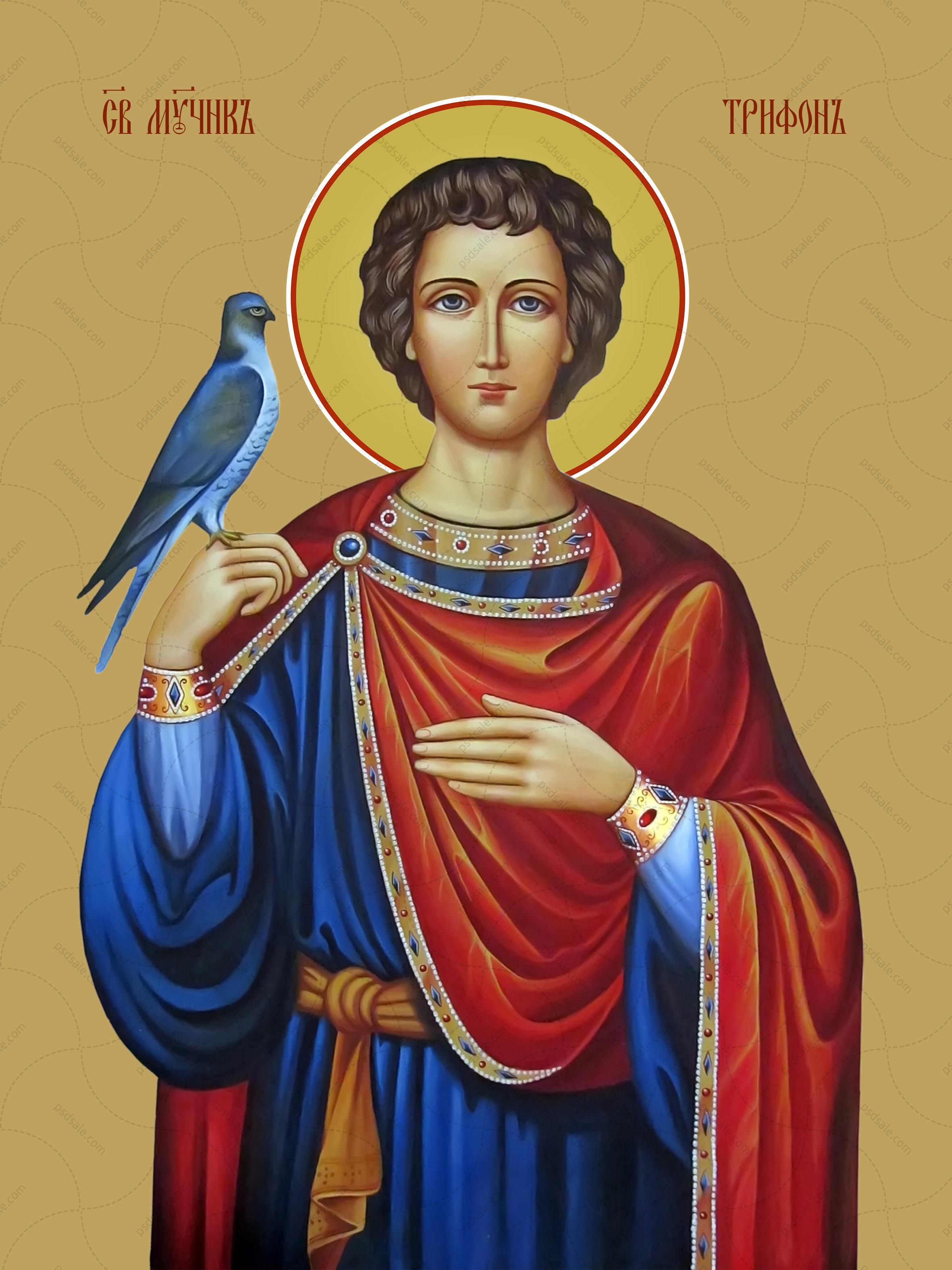 Трифон Апамейский, мученик